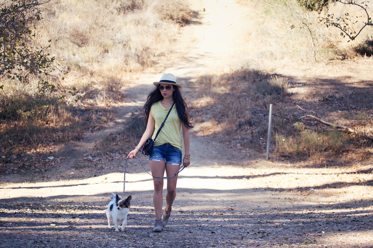 la survival guide, the la survival guide, dogs los angeles, fashion blogger, la style, la model, papillon, kelly wearstler clothing, j crew hat, cutoffs, anine bing shorts, anine bing booties, phillip lim purse