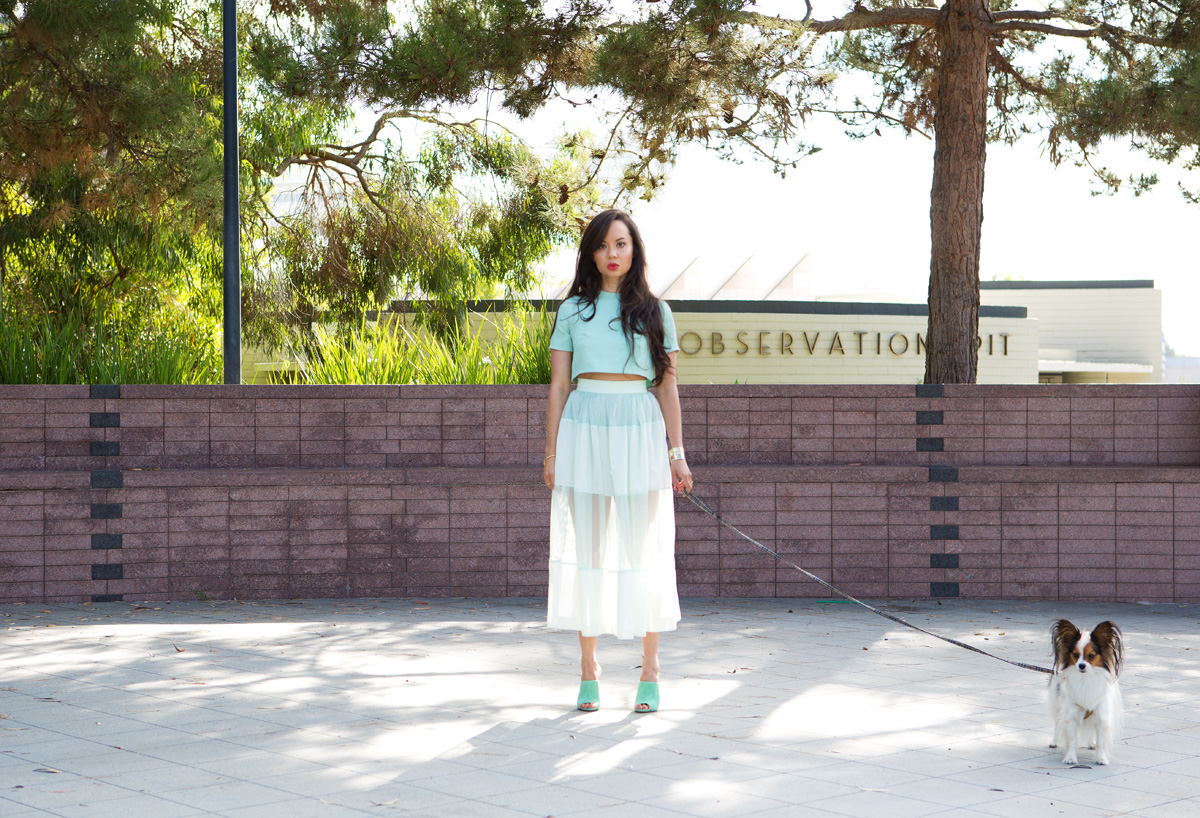 vivian chan rosie, vivian chan rosie skirt, vivian chan rosie skort, vivian chan skirt, vivian chan skort, sheer green skirt, sheer mint skirt, sheer green skort, green skort, sheer mint skort, mint skort, vivian chan designer, vivian chan clothing, vivan chan crop, vivian chan crop top, vivian chan top, mint crop, mint crop top, green crop, green crop top, jenni kayne, jenni kayne shoes, jenni kayne heels, jenni kayne mules, jenni kayne mint, jenni kayne green, jenni kayne mint mules, jenni kayne green mules, lacma observation, la brea tar pits observation, la brea tar pits, la brea tar pits photoshoot, la brea tar pits photo shoot, lacma photoshoot, lacma photo shoot, michele lobosco, photographer michele lobosco, la photo shoot, los angeles photo shoot, model on dog walk, dog and model, off duty model style, la style, los angeles style, eyelash extensions, eyelash extensions la, eyelash extensions los angeles, model eyelashes, model street style, gold bodychain, gold body chain, body chain, bodychain, street style, la street style, ootd, ootn, model lips, perfect lips, camille newbern, the la survival guide, la survival guide, thelasurvivalguide, lasurvivalguide, los angeles fashion blogs, los angeles style blogs, drybar, drybar model, drybar blowout, long hair blowout, blushington, blushington weho, blushington makeup, papillon, papillon dog, eurasian models, eurasian actresses, shopping los angeles, shopping la, modeling la, modeling los angeles, xiv karats, xiv karats necklace, xiv karats diamond necklace, catbird rings, artelier world cuff, map cuff, kevyn aucoin matte, kevyn aucoin lipstick, kevyn aucoin matte lipstick, dogs los angeles, papillons los angeles, dogs la, papillons la, papillon, papillon model, pipthepap, imjudgingyou