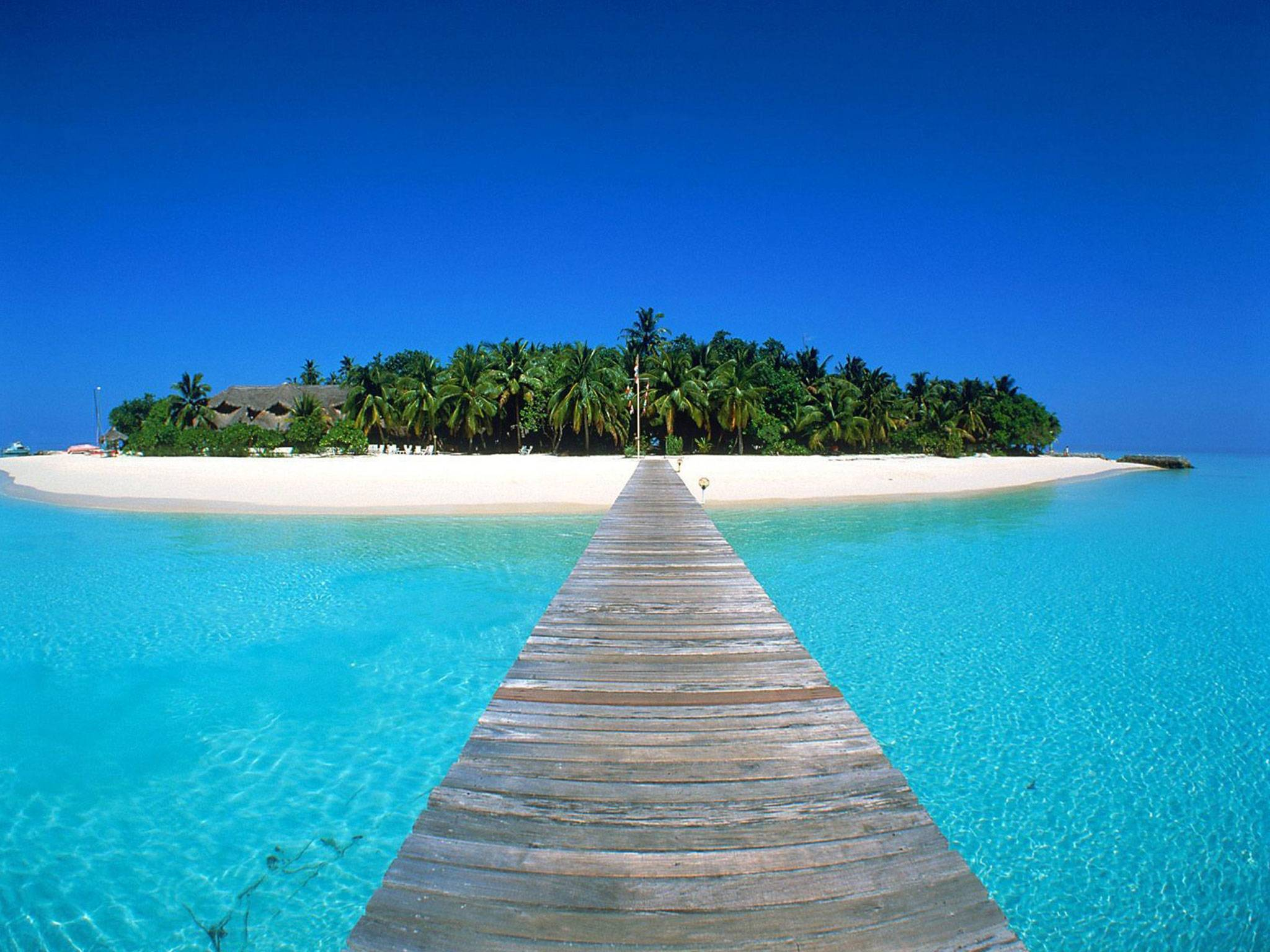 top 10 places to visit, camille newbern, camille hom newbern, the la survival guide, thelasurvivalguide, la survival guide, lasurvivalguide, travel blog, travel blogger, top 10 travel, top 10 vacation, top 10 places, maldives, the maldives, trip maldives, best snorkeling, best diving, best scuba, best scuba diving, maldives snorkel, maldives bungalows, maldives scuba, maldives diving, travel maldives, sri lanka, travel sri lanka, vacation sri lanka, visit sri lanka, visit maldives, sri lanka hike, sri lanka safari, sri lanka elephant, sri lanka travel, buenos aires, buenos aires argentina, visit buenos aires, visit argentina, travel buenos aires, travel argentina, palermo argentina, palermo buenos aires, kauai, kauai hawaii, best hawaii, best island, best vacation, kauai visit, kauai vacation, kauai travel, beautiful kauai, bali, bali indonesia, visit bali, travel bali, vacation bali